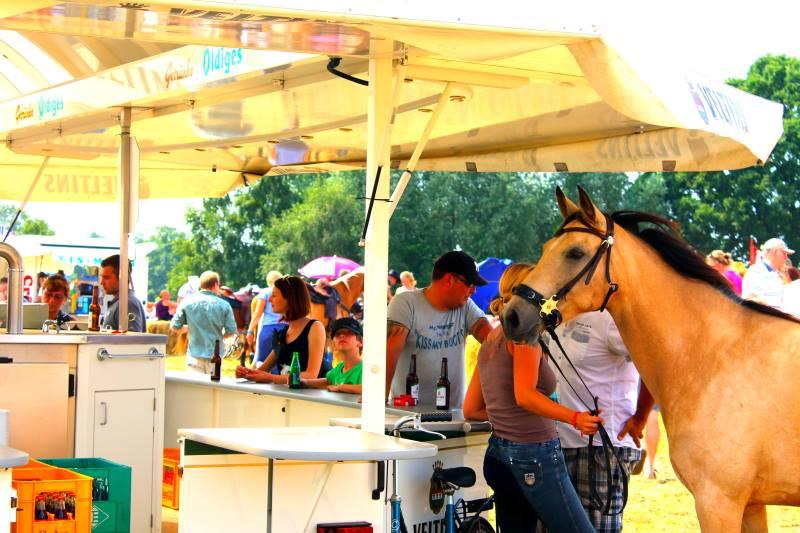 steht ein pferd an der Bar_klein